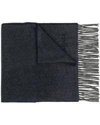 Canali コントラストトリム スカーフ - ブルー