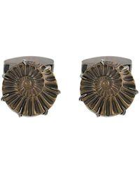 Tateossian Запонки Ammonite - Металлик
