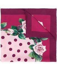 Dolce & Gabbana Vierkante Sjaal - Roze