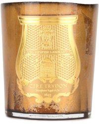 Cire Trudon Wax Candle - Metallic