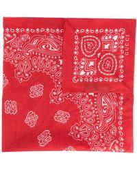 Gucci Schal mit Bandana-Print - Rot