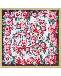 Dolce & Gabbana Платок С Принтом - Пурпурный