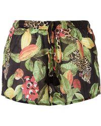 Isolda - Printed Shorts - Lyst