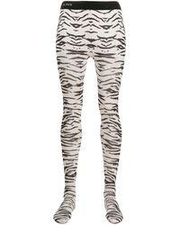 Laneus Zebra-print Tights - White