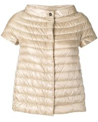 Herno Short-sleeve Feather Down Jacket - Multicolour