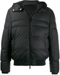 Emporio Armani Hooded Padded Jacket - Black