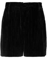 ALEXACHUNG Neo-noir Velvet Shorts - Black