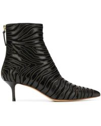 Francesco Russo Pointed Toe Ankle Boots - ブラック