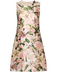 Dolce & Gabbana - Платье-трапеция С Цветочным Принтом - Lyst