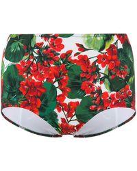 Dolce & Gabbana Bikinihöschen mit Blumen-Print - Grün