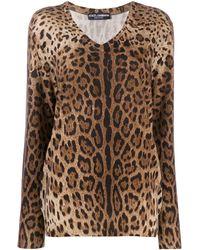 Dolce & Gabbana Leopard-print Cashmere Sweater - Brown