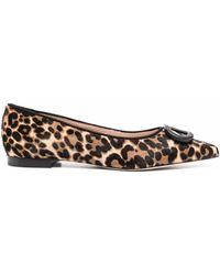 Dee Ocleppo Jungle Leopard-print Ballerina Shoes - Multicolor