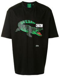 Lacoste ロゴ Tシャツ - ブラック