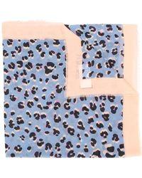 ESCADA Leopard Print Scarf - Blue