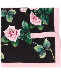Dolce & Gabbana Rose Print Scarf - Black
