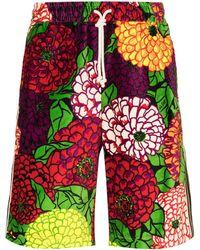 Gucci Шорты С Цветочным Принтом Из Коллаборации С Ken Scott - Красный