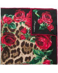 Dolce & Gabbana Foulard à imprimé léopard et fleurs - Marron