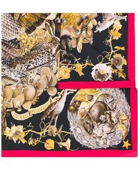 Hermès Платок Faune Et Flore Du Texas 1990-х Годов Pre-owned - Коричневый