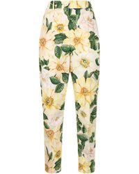 Dolce & Gabbana Брюки С Завышенной Талией И Принтом Camellia - Желтый