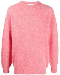 Harmony Shaggy Crewneck Wool Jumper - Pink