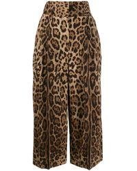 Dolce & Gabbana レオパード クロップドパンツ - マルチカラー