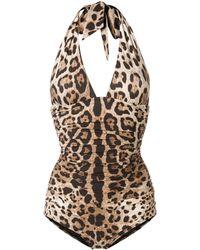 Dolce & Gabbana レオパード 水着 - ブラウン