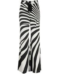 Roberto Cavalli Zebra-print Wide-leg Pants - Black