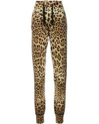 Dolce & Gabbana Спортивные Брюки С Леопардовым Принтом - Коричневый