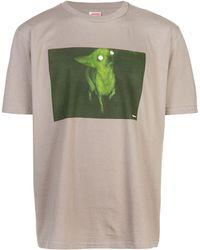 Supreme Chris Cunningham Chihuahua T-shirt - Bruin