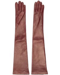 N°21 Long Leather Gloves - Multicolour