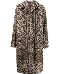 Dolce & Gabbana Леопардовое Пальто - Коричневый
