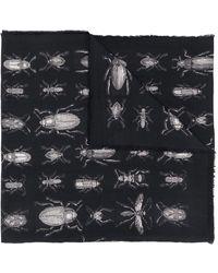 Alexander McQueen Écharpe imprimée à bords frangés - Noir