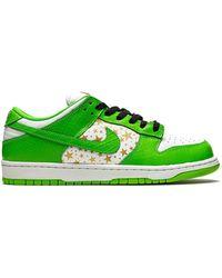 Nike Sb Dunk Low Sneakers - Green