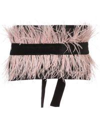 Josie Natori Velvet Ostrich Feather Belt - マルチカラー