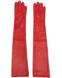 Manokhi Длинные Перчатки - Красный