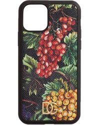 Dolce & Gabbana プリント Iphone 11 Pro ケース - マルチカラー