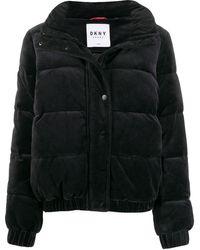 DKNY ベロア パデッドジャケット - ブラック