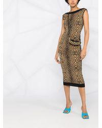 Philipp Plein Платье Maribelle Вязки Интарсия С Леопардовым Узором - Черный