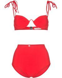 mallory bikini bilder galerie
