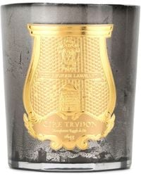 Cire Trudon Ernest Scented Candle - Metallic