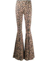 Versace Jeans Couture レオパード フレアパンツ - ブラウン