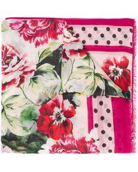 Dolce & Gabbana Floral Print Scarf - Pink