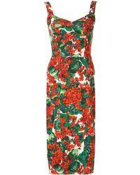 Dolce & Gabbana Geranium-print Pannelled Midi Dress - Red