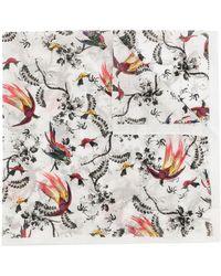 Erdem Parrot Floral-print Scarf - Multicolour