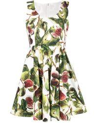 Dolce & Gabbana - Fig Print Circle-skirt Dress - Lyst