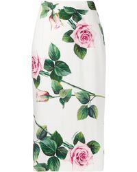 Dolce & Gabbana Kokerrok Met Rozenprint - Wit