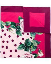 Dolce & Gabbana Платок С Принтом - Розовый