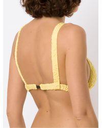Clube Bossa Paladina Jacquard Bikini Top - Yellow