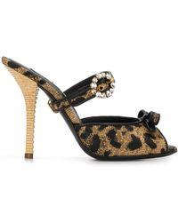 Dolce & Gabbana Мюли С Леопардовым Принтом И Пряжками - Черный