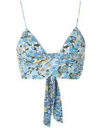 Clube Bossa Havel Printed Bikini Top - Blue